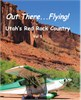 Bill Roberts Enterprises Utahs Back Country Flying DVD