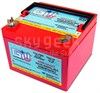 Gill 7242-16 LT Series 24-Volt/16Ah Super Capacity Sealed Lead Acid Aircraft Battery